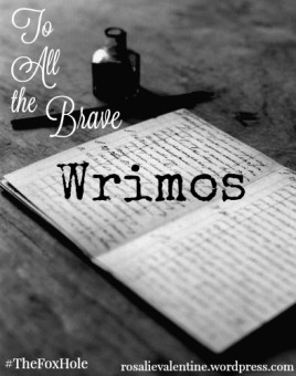 To All the Brave Wrimos feature image