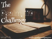 The Psalm 119 Challenge 2016 feature image